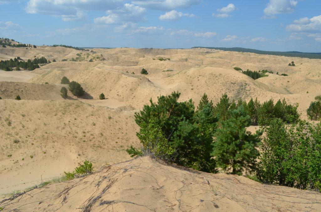Настоящая пустыня